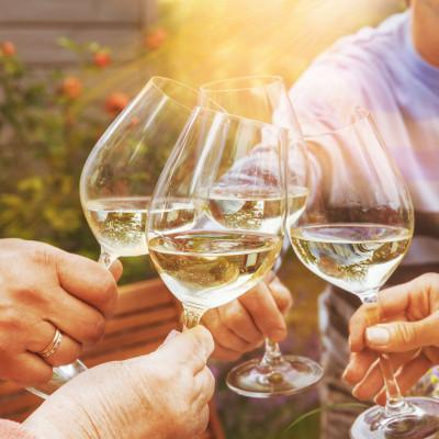 Bepillantás a borászat rejtelmeibe